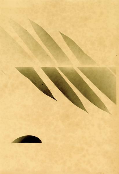 Bruno V. Roels - Icarus (Palmograph), 2019