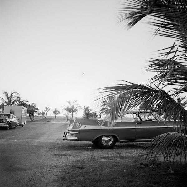 Vivian Maier - Florida, n.d.