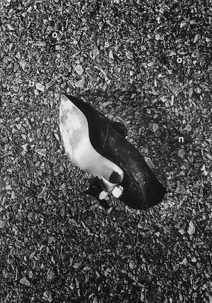 Daido Moriyama - Boston, Transit, 1997-2000