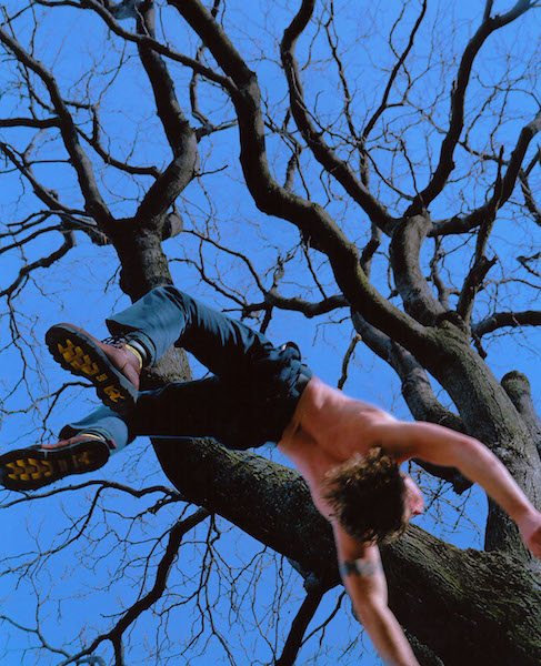 Kerry Skarbakka - Blue Tree