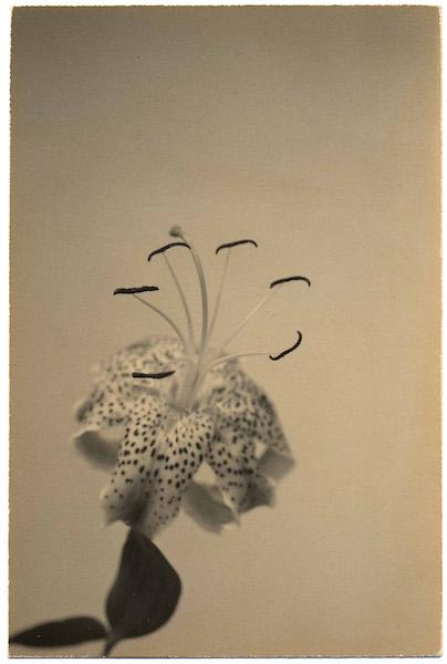 Masao Yamamoto - #1292 Nakazora, 1999