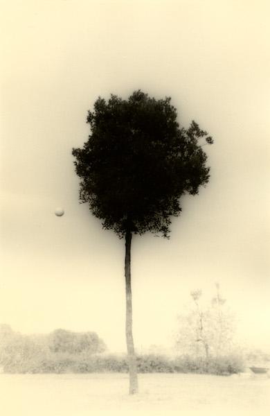 Masao Yamamoto - #1612 Kawa=Flow, 2012