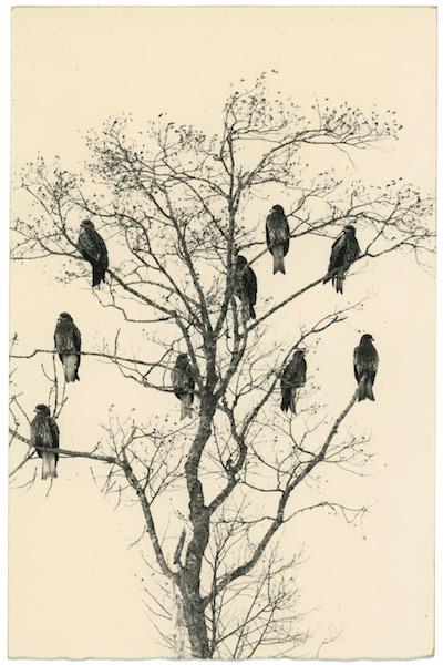 Masao Yamamoto, #1652, Kawa = Flow, n.d.