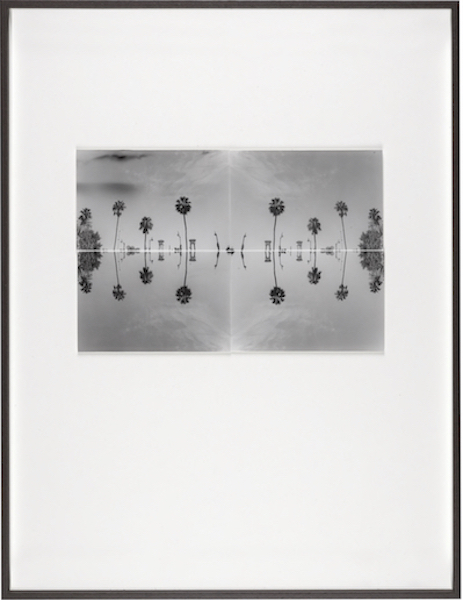 Bruno V. Roels - A Palm Tree Is A Palm Tree Is A Palm Tree (Mirage), 2015