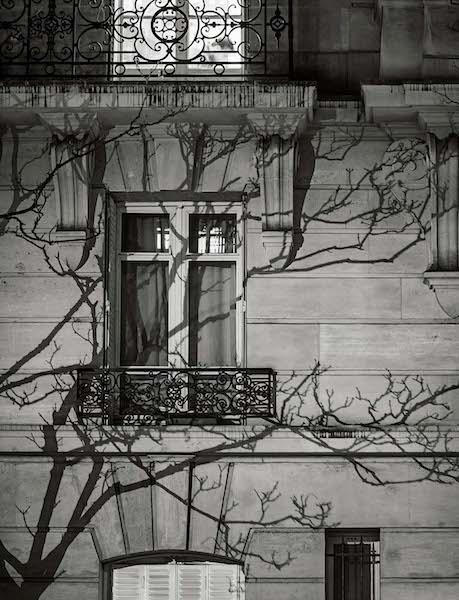 Michael Wolf - # 08, Paris Tree Shadows, 2014