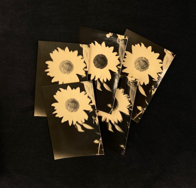 Bruno V. Roels - A Box Of Sun