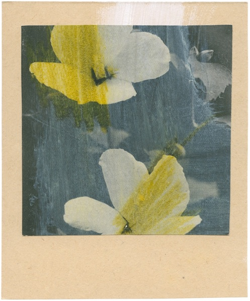 Katrien De Blauwer - Fake polaroids (11), 23.08.2019