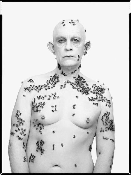 Sandro Miller - Richard Avedon/ Ronald Fischer, Beekeeper, Davis, California, May 9, (1981), 2014