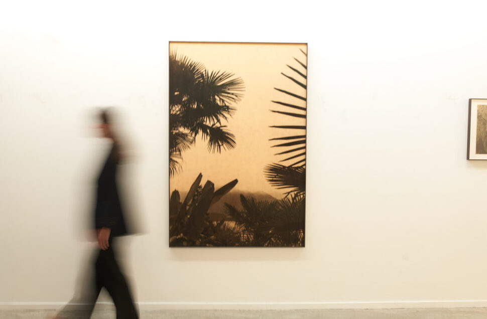 Bruno V. Roels exhibition